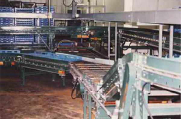 Cooling Conveyor Incorporated with Tray Washing Conveyor
